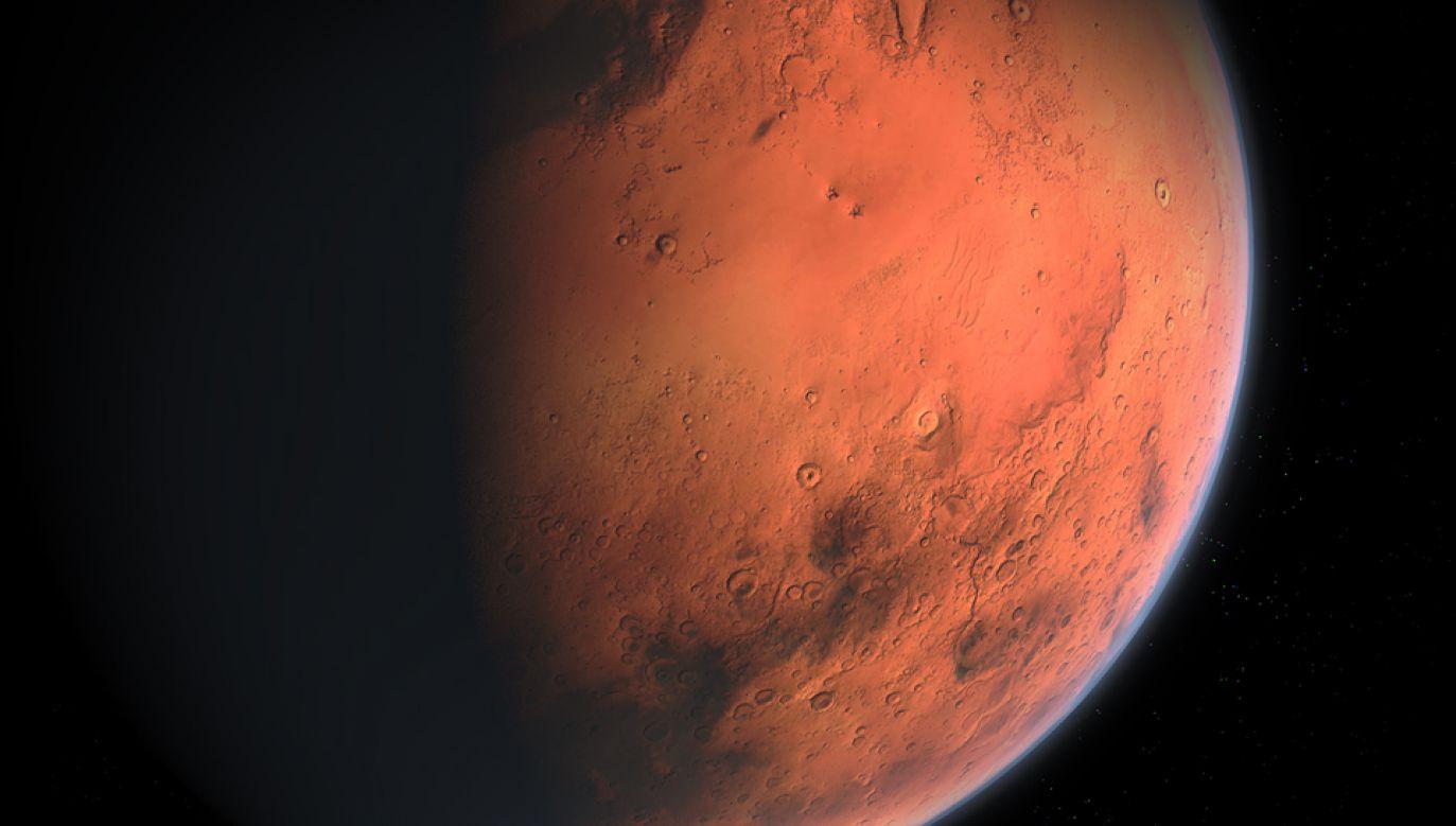 Szef SpaceX Elon Musk planuje prywatną wyprawę na Marsa (fot. pixabay.com/ainur_zakirov)