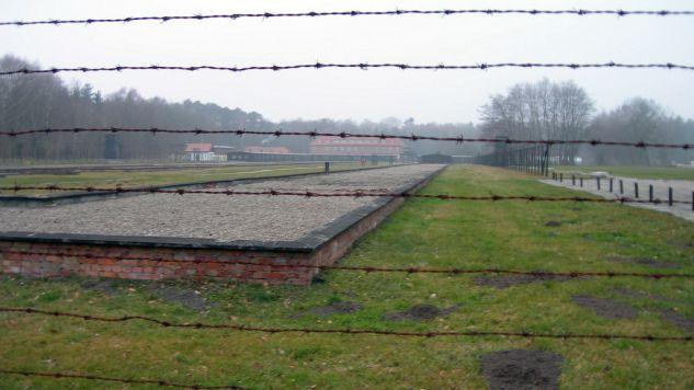 Prace archeologiczne na terenie dawnego niemieckiego obozu w Sztutowie rozpoczęto wiosną (fot. flickr.com/carolinqua)