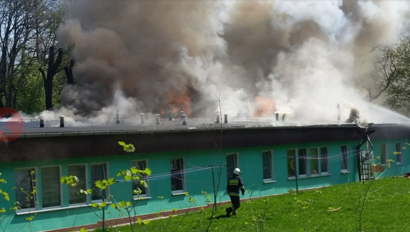 11 jednostek straży pożarnej walczy z ogniem pawilonu osrodka wypoczynkowego (fot. glucholazyonline.com.pl)