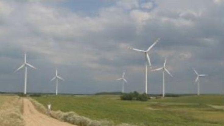 Przeciwnicy wiatraków dowodzą, że wiatraki szkodzą, zwolennicy - że farmy są bezpieczne dla ludzi i zwierząt.