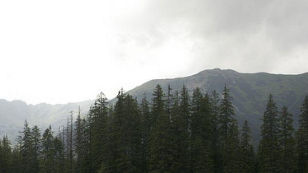 Ratownicy ostrzegają wędrujących po Tatrach (fot. flickr/Sundays)