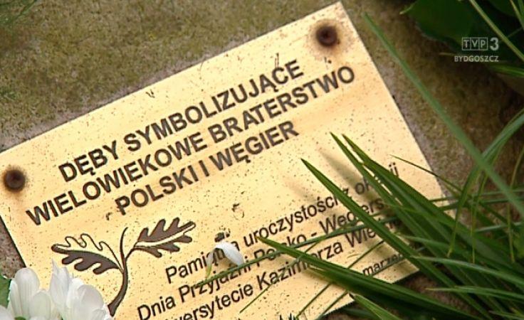 Kultywują przyjaźń polsko-węgierską
