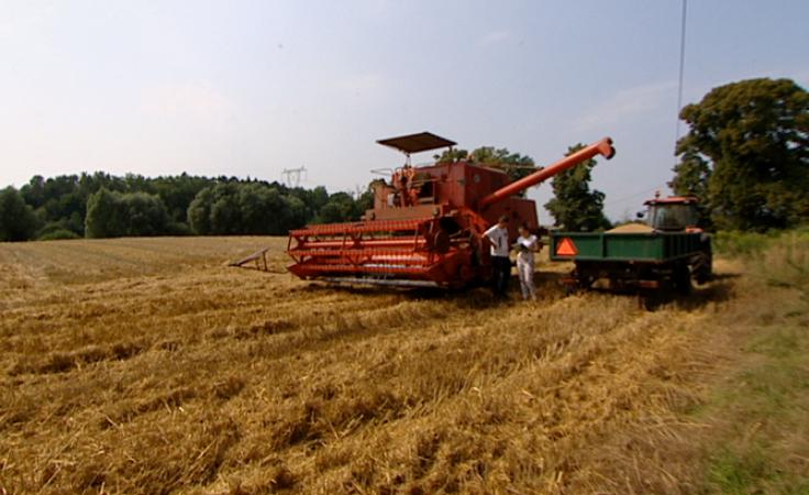 Do 30 września rolnicy mogą składać wnioski pomocowe