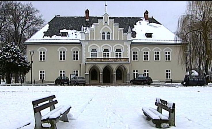 Pałac w Łodygowicach
