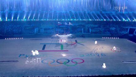 Korea Południowa i Północna wystąpią pod jedną flagą