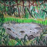 Anakonda narysowana przez Emilię Dudek, 6,5 roku