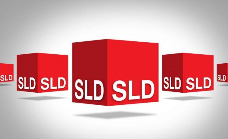 SLD ma 21 struktur w Małopolsce, fot. sld.org.pl