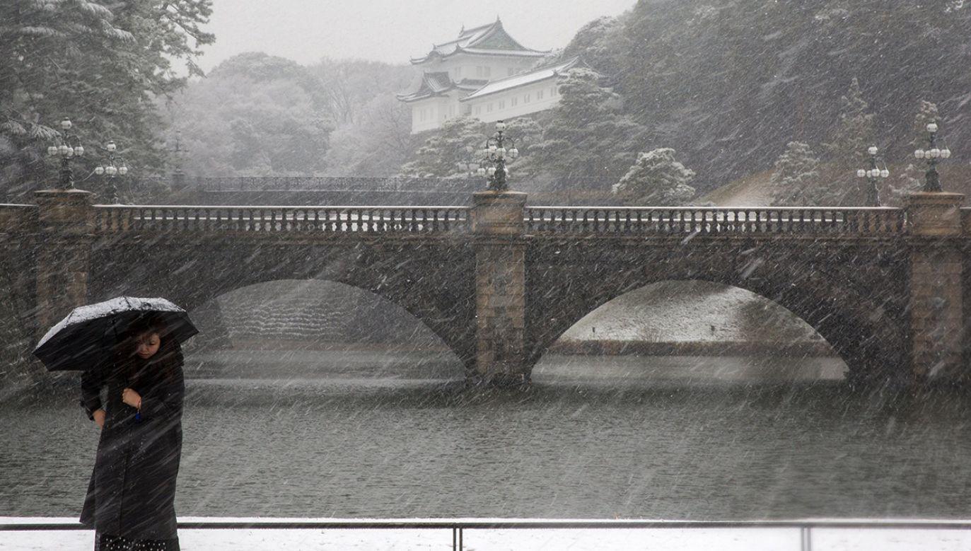 Śnieg w Tokio pada przynajmniej raz w roku, ale zazwyczaj szybko się topi (fot. PAP/EPA/CHRISTOPHER JUE)