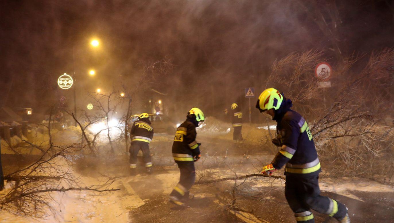 Halny powalił drzewa i uszkodził budynki w Zakopanem (fot. PAP/Grzegorz Momot)