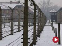 Powstrzymać Holocaust