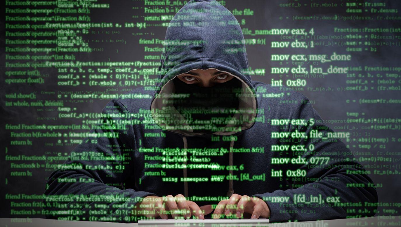 Cyberprzestępca usłyszał 181 zarzutów (fot. Shutterstock/Elnur)