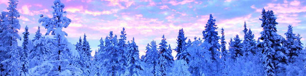 Czas wolny po fińsku