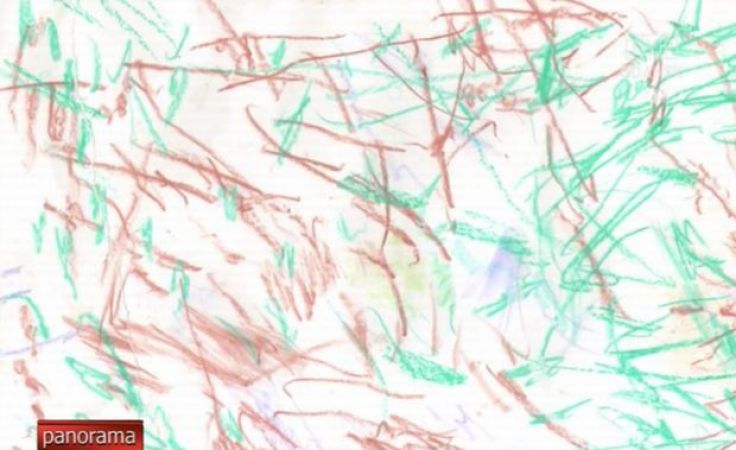 Orangutany mają talent na miarę Pollocka i Picassa!