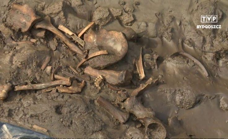 Będzie ekshumacja i pochówek szczątków żołnierzy carskich z Ciechocinka