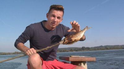 Okrasa łamie przepisy – Niezywkłe ryby słodkowodne