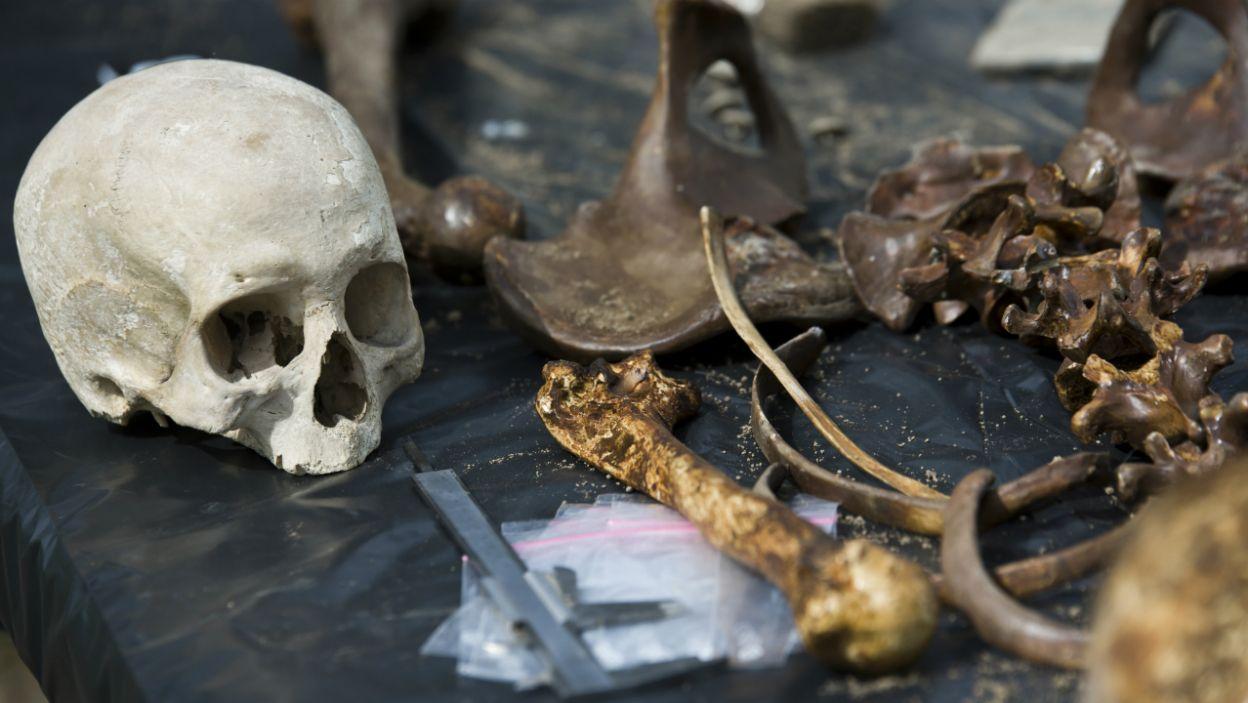 Podczas ekshumacji na Ukrainie znaleziono w masowym grobie więźniów z lwowskich Brygidek pierścień rodowy Passowskich (fot. Krzysztof Wiktor)