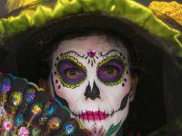 Meksyk bez kolców