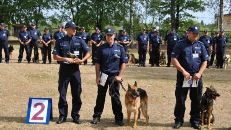 Drużyna Komendy Wojewódzkiej Policji z Olsztyna zdobyła wicemistrzostwo (fot. KWP Olsztyn)