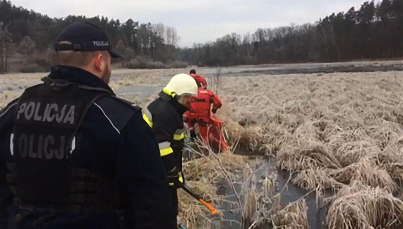 Po akcji ratowniczej ptaki odleciały w swoją stronę (fot. policja.gov.pl)