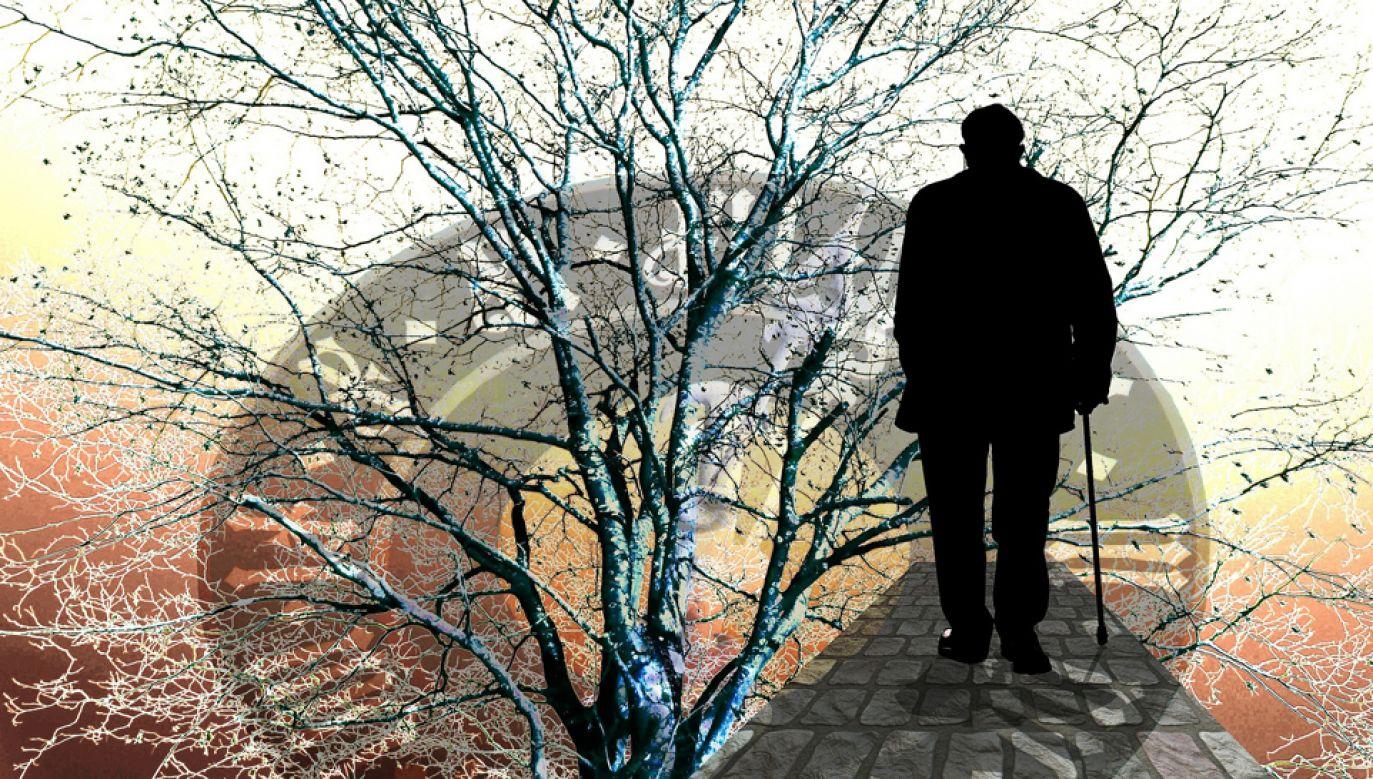 Początek choroby Alzheimera występuje zwykle po 65. roku życia (fot. pixabay.com/geralt )