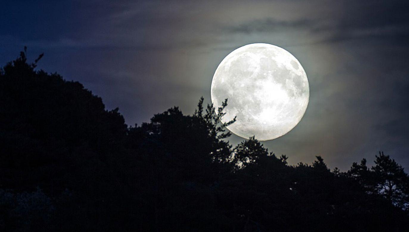Po raz ostatni człowiek stąpał po księżycu w 1972 roku (fot. Pixabay)