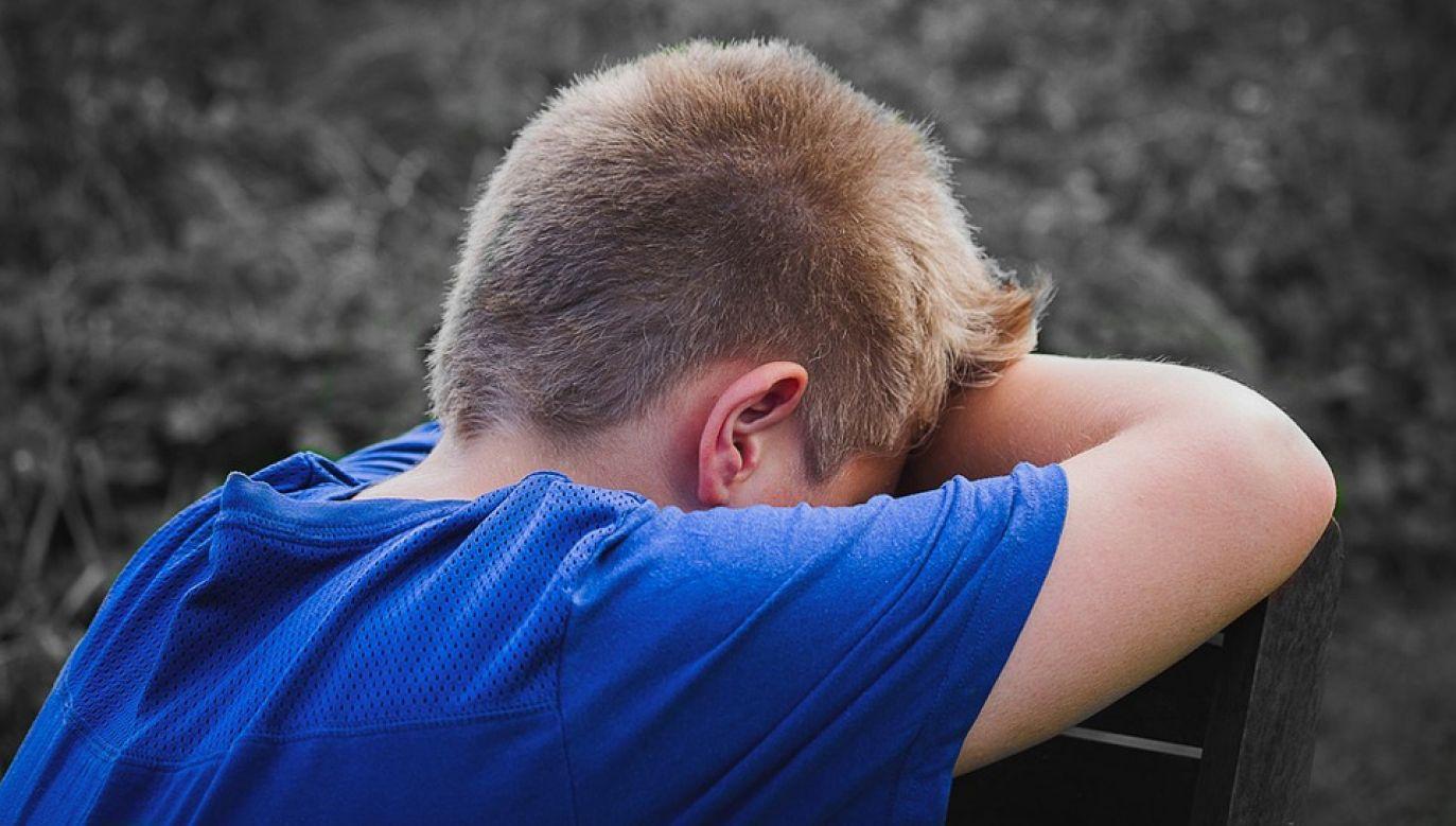 Kłopoty rodziny z Jugendamtem trwały ponad rok (fot. Pixabay/Myriams-Fotos)