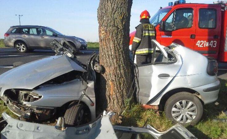 Auto dosłownie owinęło się wokół drzewa (fot. KP PSP Chełmno)