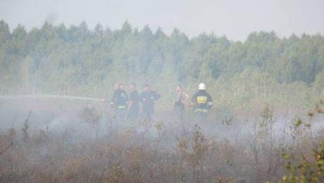 """Drugi raz w ciągu miesiąca doszło do podpalenia rezerwatu """"Torfowisko Karaska"""" (fot. Lasy Państwowe)"""