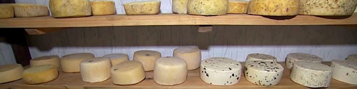 Smak domowego sera