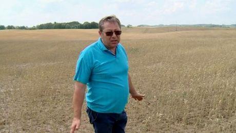 Opłakane skutki suszy. Płynie strumień rolniczych wniosków