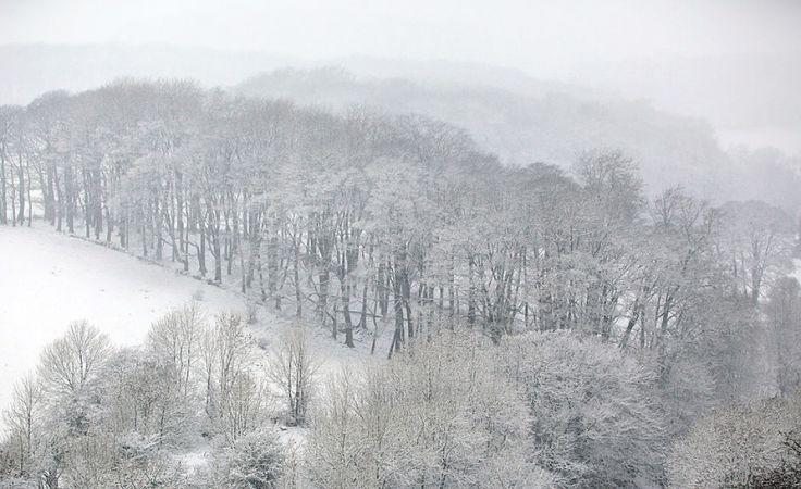Śnieżyce, mróz i silny wiatr na południu, wschodzie i w centrum kraju (fot. Christopher Furlong/Getty Images)