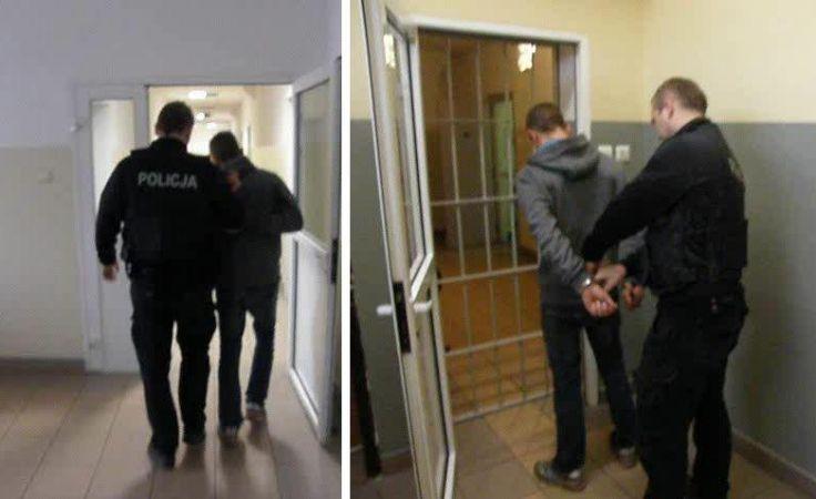 Zatrzymano 7 osób zajmujących się okradaniem jednej z ferm trzody chlewnej pod Ostródą.