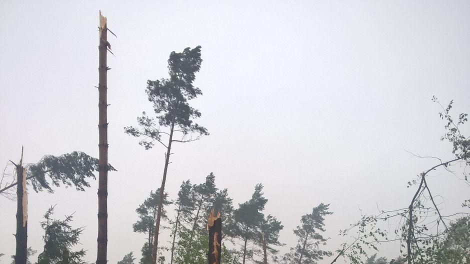Połamane drzewa skutkiem silnych burz (fot.Twoje Info/Monika)