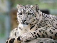 Nowi mieszkańcy warszawskiego zoo