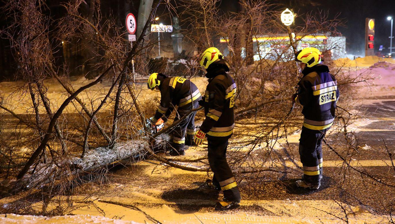 Strażacy usuwają drzewo, powalone na jezdnię w centrum miasta w Zakopanem (fot. PAP/Grzegorz Momot)