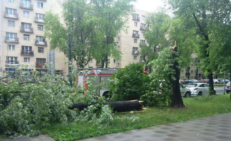 Okolice Placu Centralnego i Alei Andersa, fot.  Magdalena Musiał (1)
