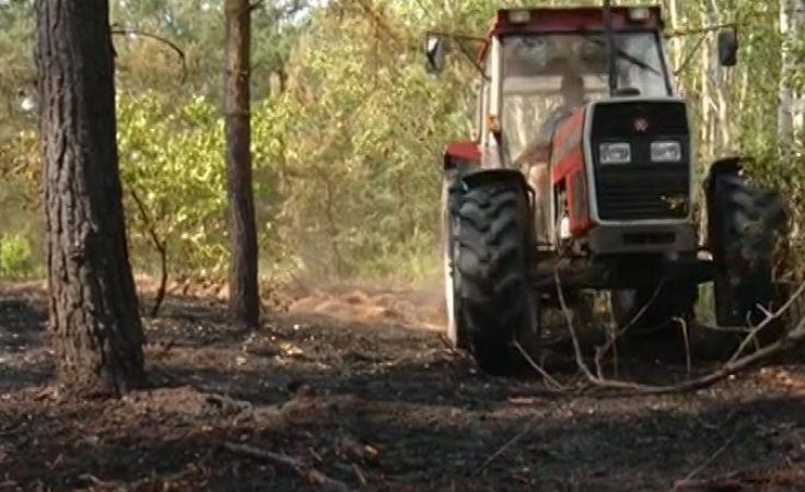 1,5 ha lasu i nasypu kolejowego poszło z dymem