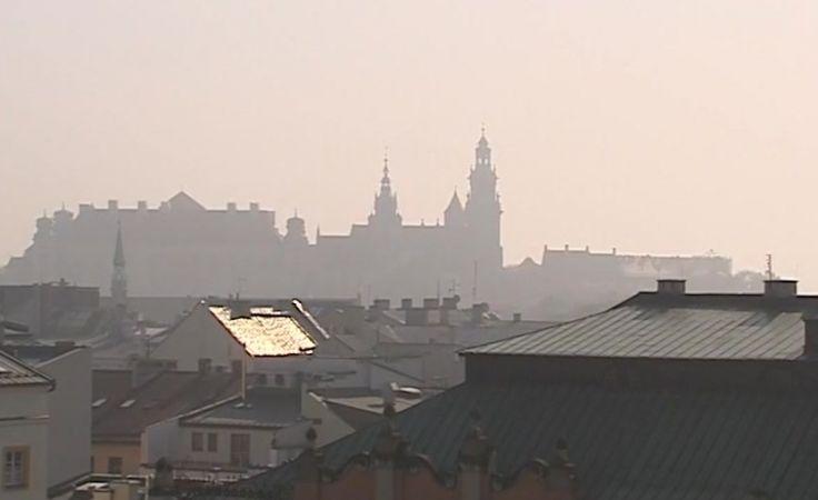 Dane zbierano w 11 lokalizacjach w Krakowie i w okolicach (fot. TVP3 Kraków)