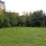 Działka nr ew. 68 przy ul. Domaniewskiej w Warszawie