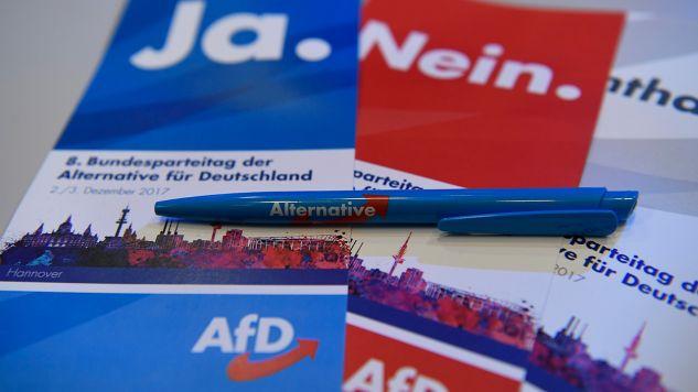 AfD ze wzrostem poparcia (fot. REUTERS/Fabian Bimmer)