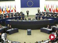 """""""UE nie toczy z nami wojny"""", """"nie wszyscy europosłowie PO czują się »totalniakami«"""""""