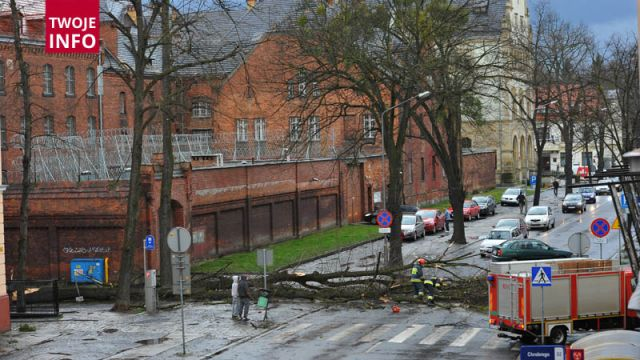 Wichury w Brzegu. Drzewo runęło na główną ulicę, z Zamku Piastów Śląskich wiatr zerwał dach
