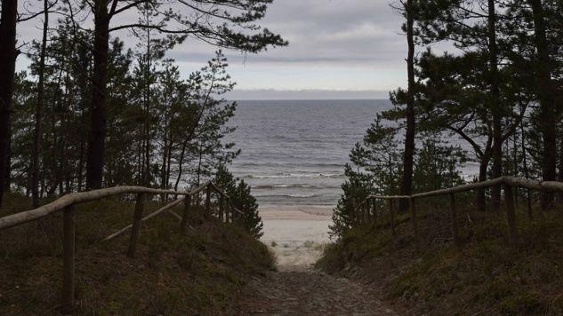 Wejście z lasu na plażę Zatoki Gdańskiej na wysokości miejscowości Nowy Świat na Mierzei Wiślanej (fot. PAP/Adam Warżawa