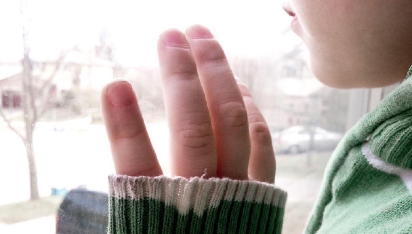 Policja zatrzymała osiem osób podejrzanych o wykorzystywanie seksualne dziecka (fot. flickr.com/Hannah Yoon)