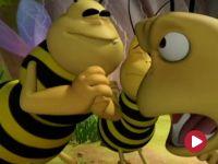 Pszczółka Maja, Nareszcie wakacje!