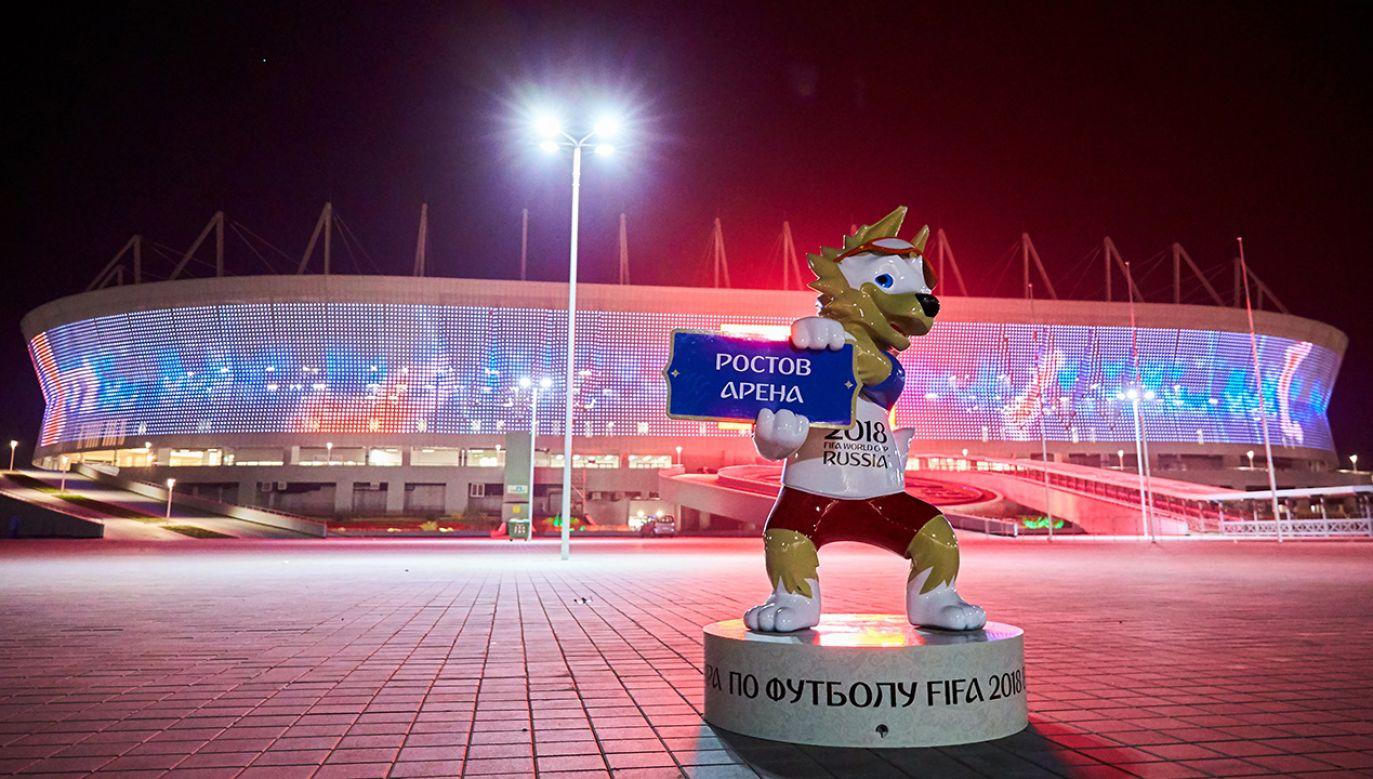 20 polskich europosłów wzywa do bojkotu MŚ w piłce nożnej w Rosji (fot. REUTERS/Sergei Pivovarov)