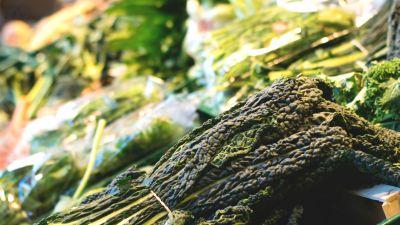 Okrasa łamie przepisy – Zielona kuchnia