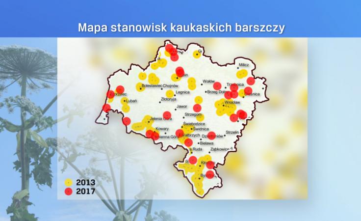 (źródło: WSEiZ Warszawa, barszcz.edu.pl; fot. TVP3 Wrocław, flickr.com/stalkerpl)