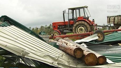 Po nawałnicy ogromne straty u rolników w zbożu i inwentarzu