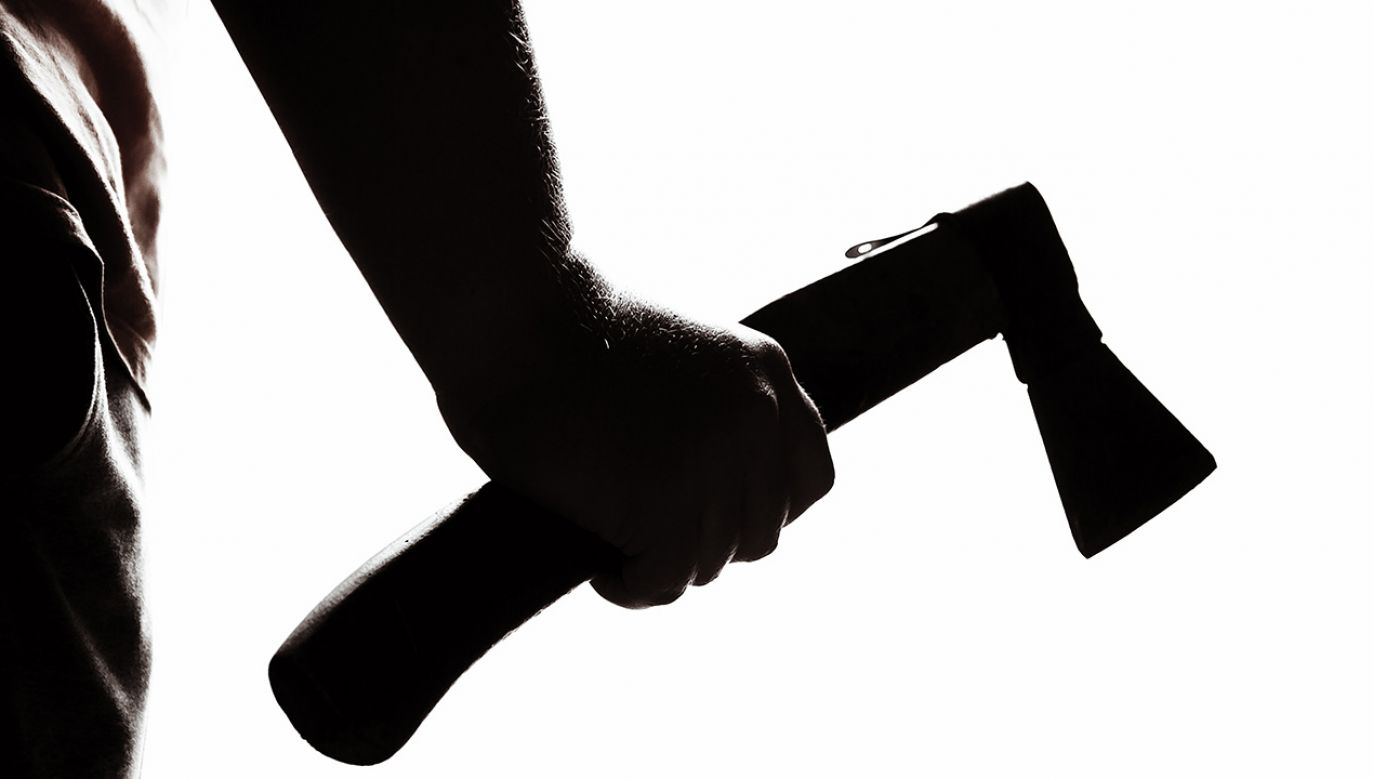 Uczeń zaatakował siekierą nauczycielkę i dwoje swoich kolegów (fot.Shutterstock/Max Sky)